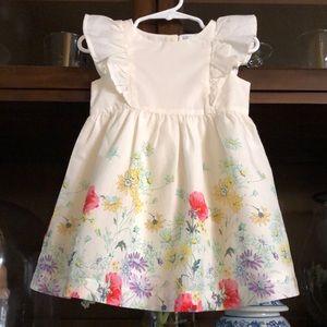 Baby Gap Floral Ruffle Botanical Dress 18-24 Month